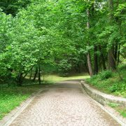 Stadtpark Natur